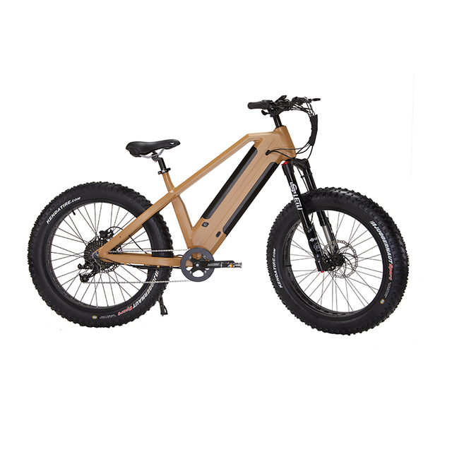 2020 Long Range Fat Tire Beach Ebike Boy 750W 1000W Electric Pedal Assist Bike for Adults