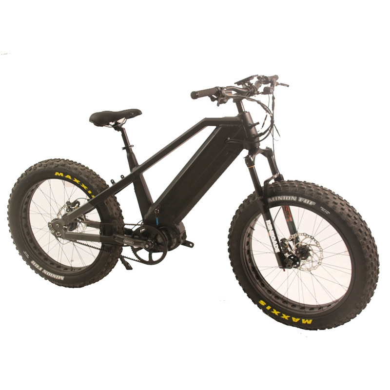 2020 Bafang M620 Motor Mid Drive Fat Tire Electric Mountain Bike /eMTB with Hard Tail